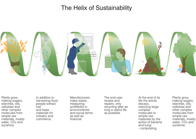 Sustainability of Life on Earth