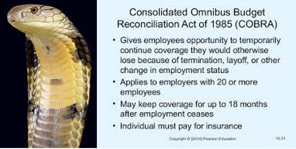 Consolidated Omnibus Budget Reconciliation Act (