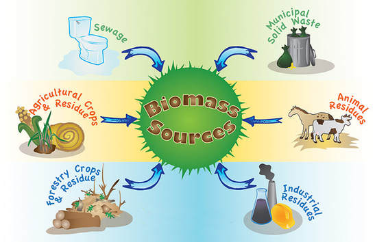 Bioenergy and Biomass
